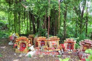 offerings-around-tree